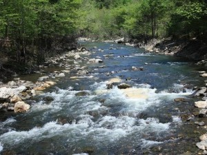 Lower mountain fork river archives beavers bend for Oklahoma trout fishing