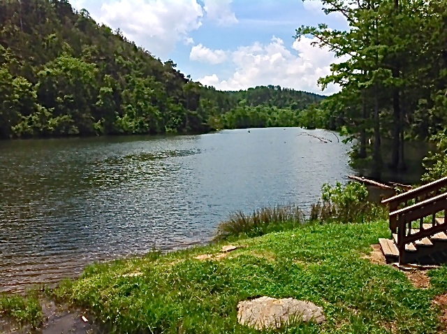 Beavers bend fly shop archives beavers bend vacations for Fly fishing oklahoma